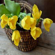 10% Rabatt bei Blume2000